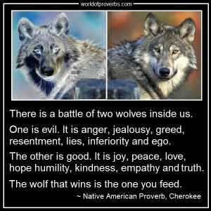 There's A Battle Of Two Wolves Inside Us All