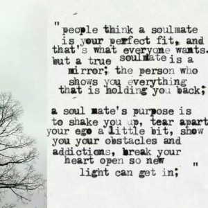 People think a soulmate is..