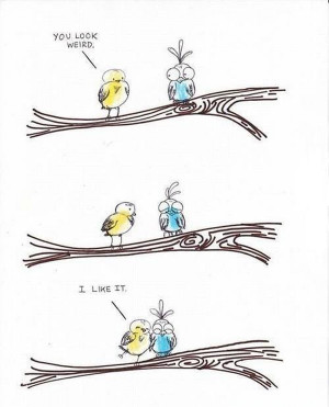by giulia in cute funny drawings and animations tags birds cuddle cute ...