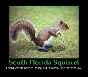 cute squirrels florida retirement funny poster
