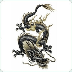 Chinese Astrology - Divination - The White Goddess