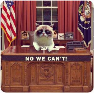 Grumpy Cat - No we can't