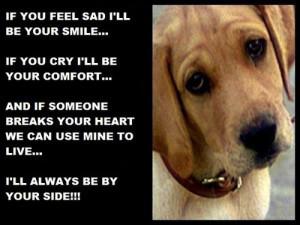 ... dogs with sayings funny dog sayings dog sayings and quotes dog saying