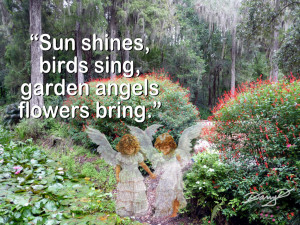 Garden Quotes Pictures