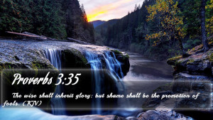 Proverbs 3:35 - Bible Verse Quote by bible-quote