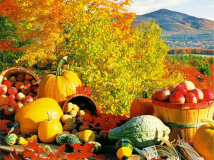 We hope you enjoy this free Fall Harvest wallpaper download from our ...
