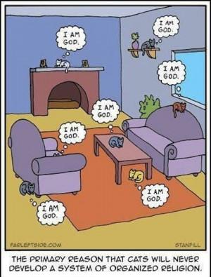 funny cats cartoon Hilarious Cartoon Joke LMAO!!