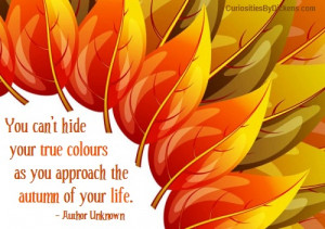 true-colors