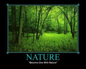 Transcendentalism Nature Nature._lit.jpg