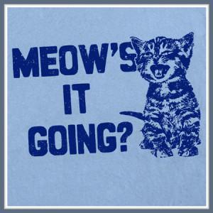 Funny Cat Sayings T Shirts Shirts And Custom Funny Cat