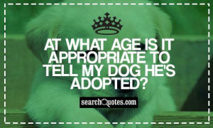 Appropriate Funny Quotes And Sayings At what age is it appropriate