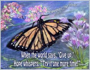 butterfly-metamorphosis-logo-1024x804.jpg