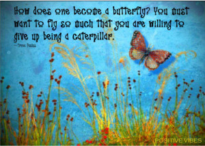 butterfly inspirational quotes Butterflies Quotes - BrainyQuote.