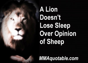 Lion Doesn't Lose Sleep Over Opinion of Sheep