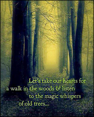 Let's take our hearts for a walk in the woods