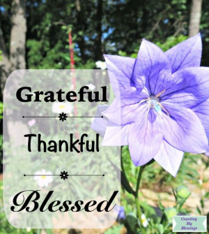 Quotes and Verses About God's Blessings