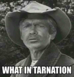 Uncle JED...BEVERLY HILLBILLIES