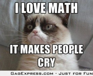 Even Grumpy Cat Likes Math