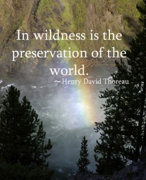 ... The Preservation Of The World. - Henry David Thoreau ~ Camping Quotes