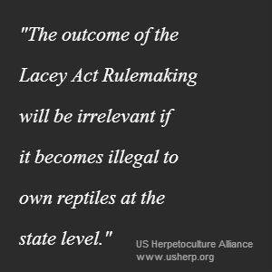 Lacey Act quote