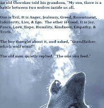 the wolf-cherokee wisdom