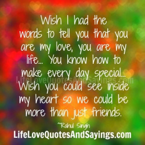 wish i had the words to tell you that you are my love you are my life ...