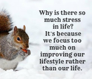 Why is there so much stress in life? It's because we focus too much on ...