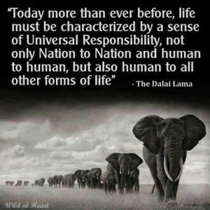 Responsibility quotes, motivational, sayings, life, sense