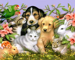 ... literary excerpts and short poems relating to animals and animal