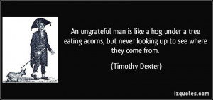 An ungrateful man is like a hog under a tree eating acorns, but never ...