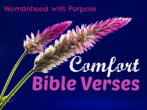 Comfort Bible Verses