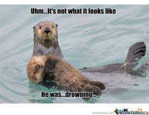 Sea Otter Meme