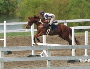 31/6-7 horse jumping