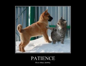 Discouragement and inspiring quotes patience, it with event that ...