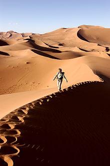 Dune (film)