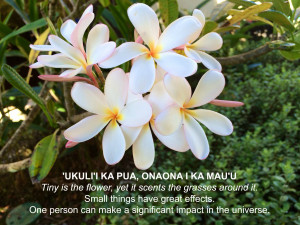 ... the flower, yet it scents the grasses around it. – Hawaiian Proverb