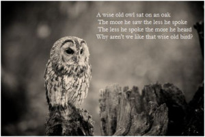 Inspirational Quotes with Owls