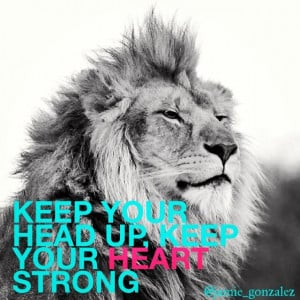 lion #quote #heart #love #strength
