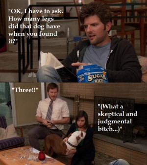 Andy Dwyer Andy Dwyer