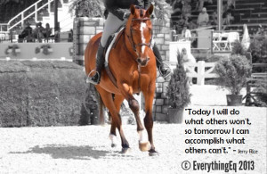 Equestrian Inspiration: Focus