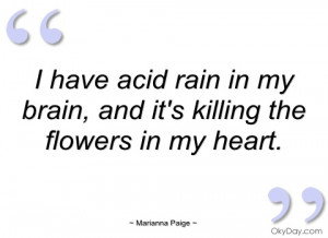 have acid rain in my brain marianna paige