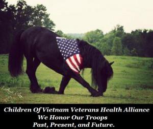 Children Of Vietnam Veterans Health Alliance Honors Memorial Day 2012 ...