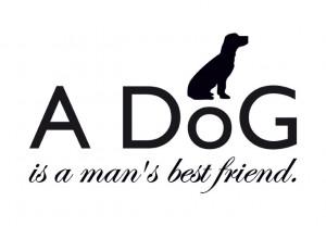 Best Verkocht - A dog is a man's best friend