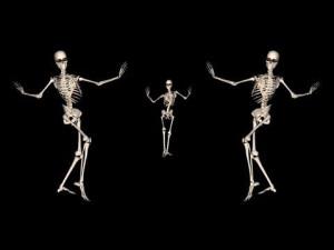 Skeleton Belly Dance Trio