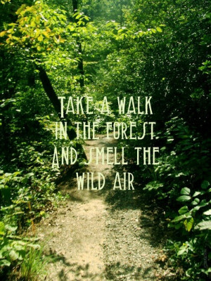 "... Take A Walk In The Forest And Smell The Wild Air "" ~ Nature Quote"