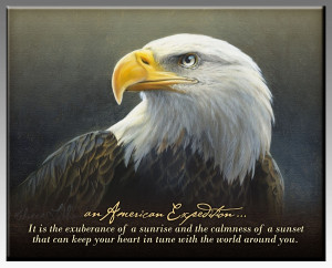 Bald Eagle Inspirational Wildlife Wall Plaque