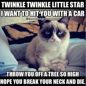 ... Category: Funny Animals // Tags: Funny grumpy cat poem // April, 2013