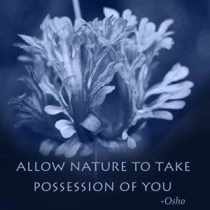 Allow nature to take possession of you.