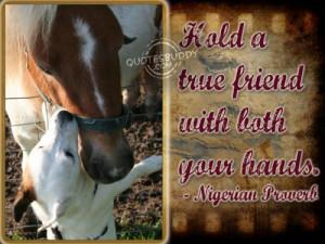 Cherish Your Friendships