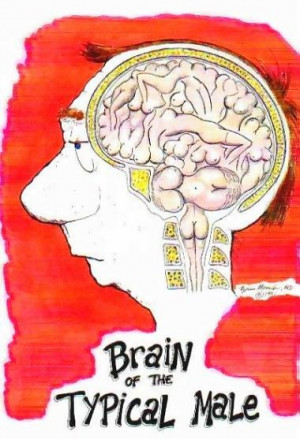 home funny an amazing pictures see the brain of man an woman so funny ...